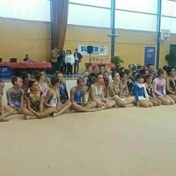 Championnat départemental individuel GR de la Marne - 21 octobre 2017 - Vitry le François